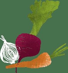 Biologa Nutrizionista Cagliari